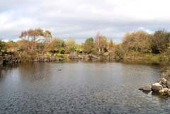 Ireland_House_Wildfowl_Cove.jpg